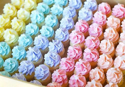 Cupcakes-babycolors